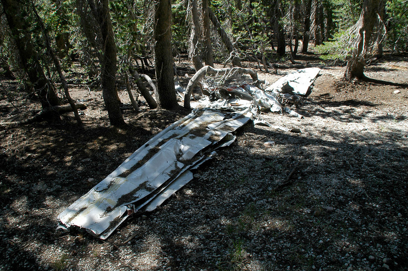 Both wings and a section of the fuselage remain at the crash site.