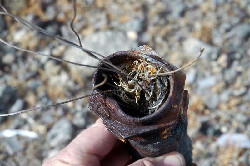It had six wires inside of it.