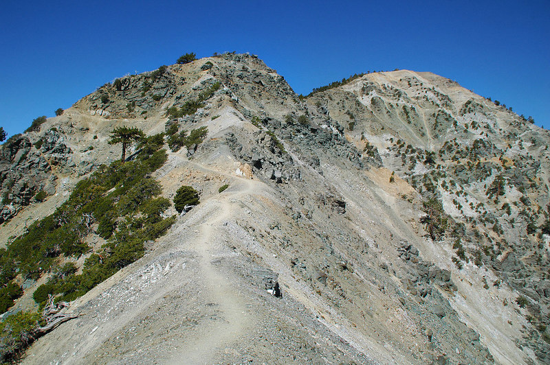 Two weeks later, hiking back towards Mt Baldy. Have more info this time.