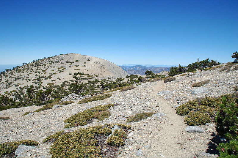 Hiking on to West Baldy which is about half a mile away.