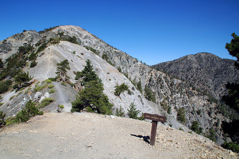 From the Notch, I followed the Devils Backbone Trail to Mt Baldy.