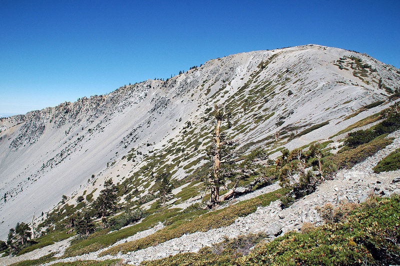 A view of the Baldy Bowl as I approach Mt Baldy.