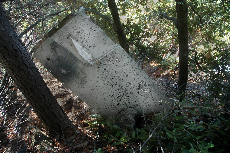A piece of the fuselage, from the left side just below the canopy. Most of it is covered with aluminum armor and that thing that looks like a blade antenna is one of two exhaust glare shields that protect the pilot's eyes from the exhaust flame at night.
