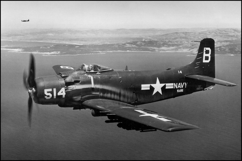 This photo of an AD-6 Skyraider is from the same Attack Squadron 195 as BuNo 135254 and 135264. The two Skyraiders at the crash site would have had markings similar to this one.  <br /> <br /> U.S. Navy photo, provided by Craig Fuller of AAIR