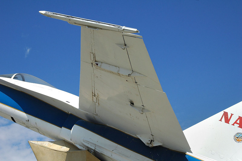 Closer look at the wing.