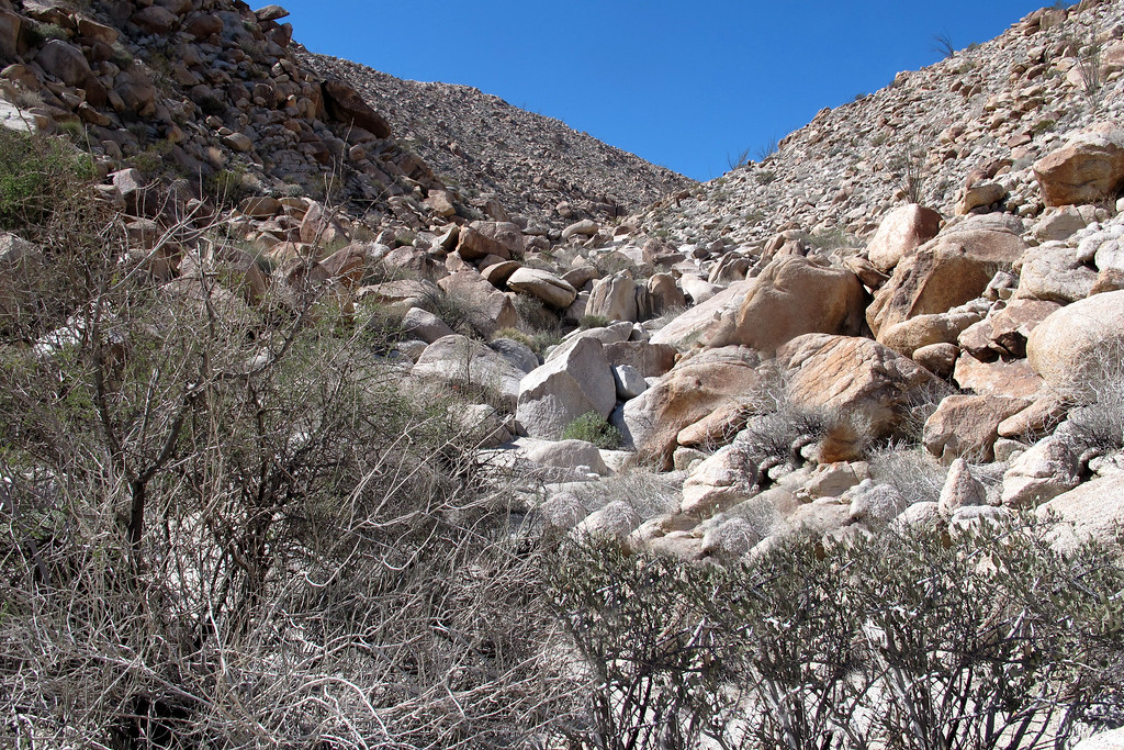 Back on our planed track after climbing over the ridge. Now we just have to deal with the big rocks in the canyon. Climbing over the ridge wasn't too bad, but don't want to be doing that again.
