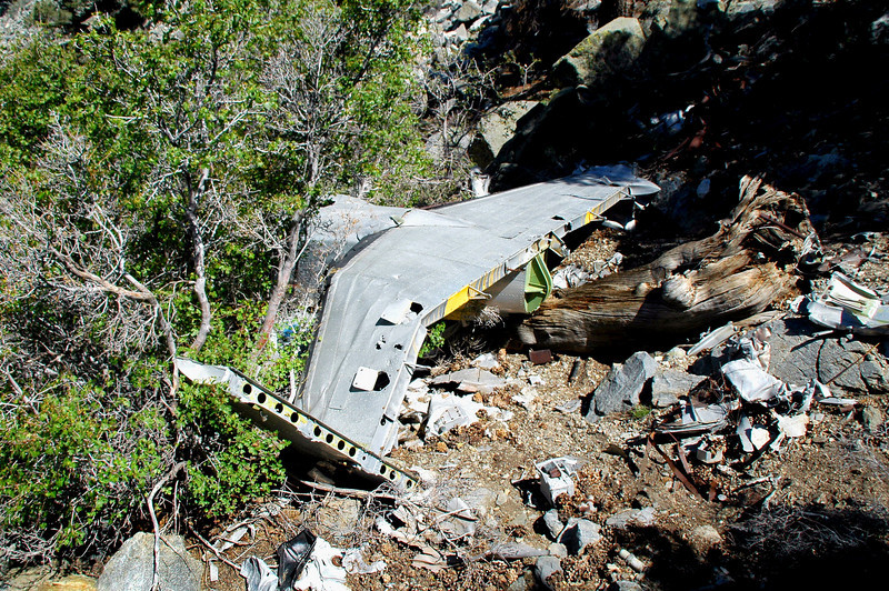 This shot shows some of the wreckage near the tail.