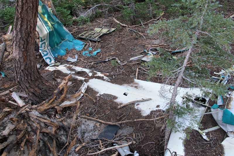 Climbed up on the large fallen tree to get an overall view of the crash site, (it took two photos). This one shows the fuselage top and tail section with the left wing.
