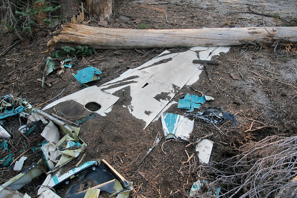 The left wing and scattered pieces. All the wreckage was contained in a small area.