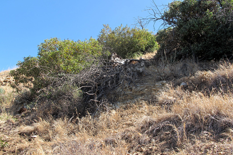 This view shows the bush with main wreckage from below as I hike back up the slope. The bush is the only thing that's keeping the wreckage from sliding down the slope.