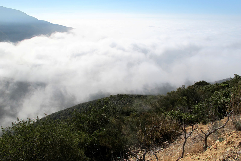 Looking out as I make my way up the mountain. When I stated the hike, I was down in the clouds. Climbed up above them as I made my way towards the crash site.