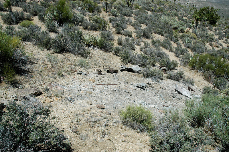 Found this burned area on the other side of the ridge about four hundred feet from the impact area.