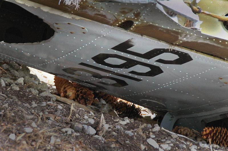 Had to lay on the ground to get this shot of the number on the fin, 33195. The C-119's S/N is 53-3195.