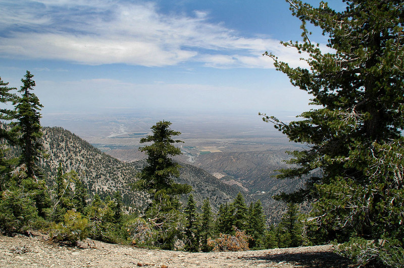 View of the Mojave Desert, from the ridge.