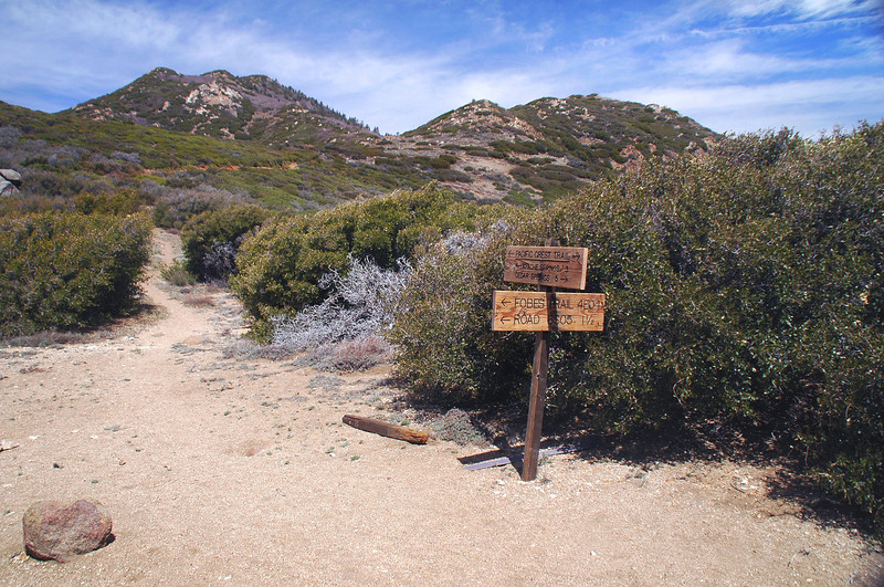 On Fobes Saddle. It was about a mile and a half hike to this point.