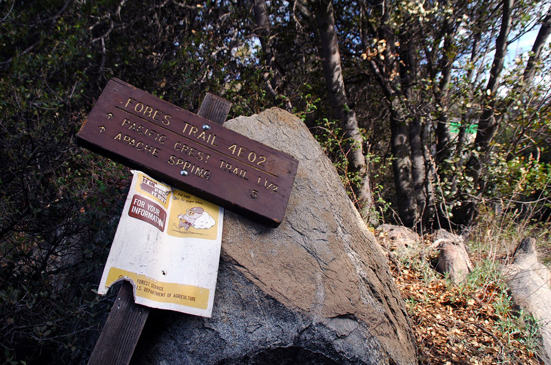 The hike started in Fobes Canyon.  The sign at the trailhead was laying on the ground. Stood it up to get a photo of it.