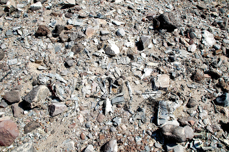 The area east of the impact crater was covered with tiny pieces.