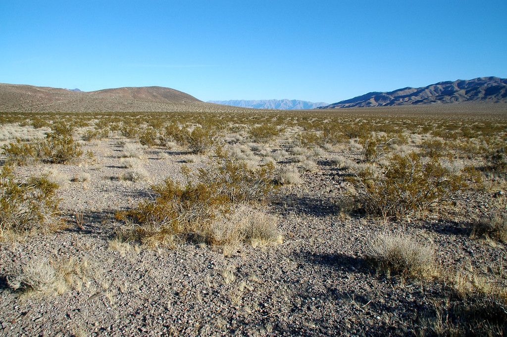 """Out on the open desert. I got the feeling that I was the only person within twenty miles. The waypoint I marked on the GPS is indicating that the Super Sabre is still about two miles away. I have no idea what remains at the crash site, Tom only said """"It's a good site""""."""
