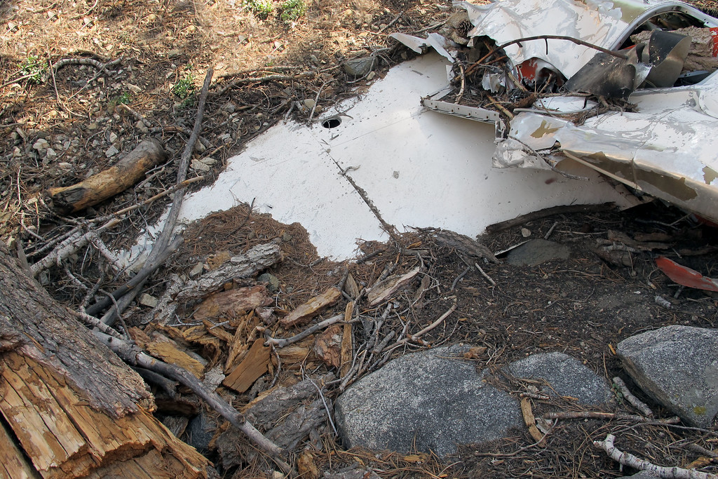 Closer view of the wing, a lot of it is buried.