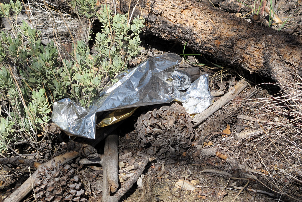 I saw something about a hundred yards away and went to check it out. Tuned out to be the remains of a mylar balloon, these things are everywhere.