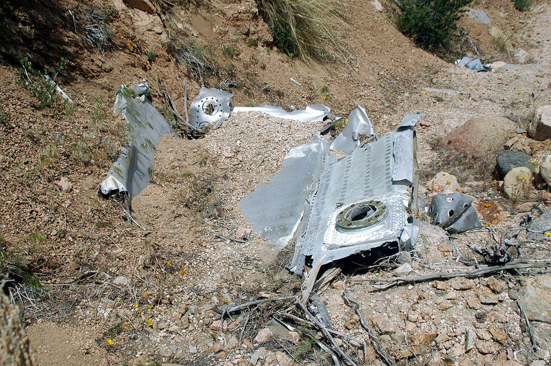 A  partly buried section of wing.