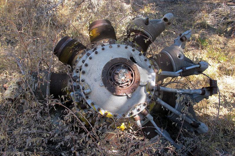 Front view of the engine. I think it's a Pratt & Whitney R-1340 Wasp.