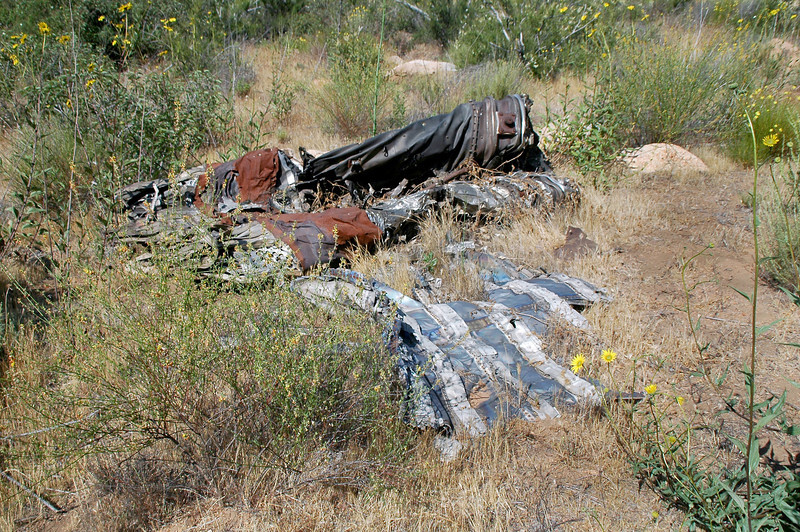 Another view of the smashed afterburner section.