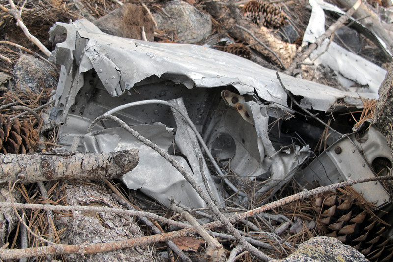 Wing structure in the same group of wreckage.