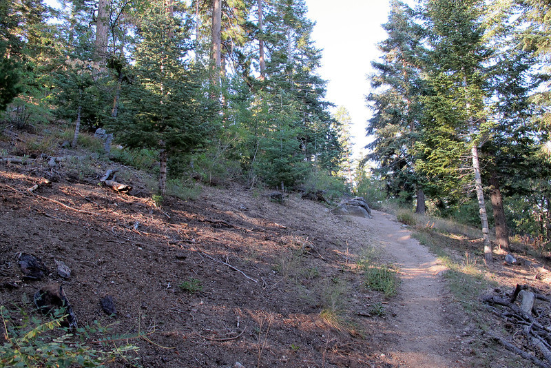 This hike started on a trail in the San Bernardino Mountains. My plan is to search an area that I believe the crash site maybe located from information that I gathered from old newspaper articles that reported on the accident.
