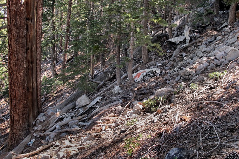 There was a lot of wreckage here at the top of the debris field. This looks like where most of the plane came to rest after being torn apart as it traveled through the trees.