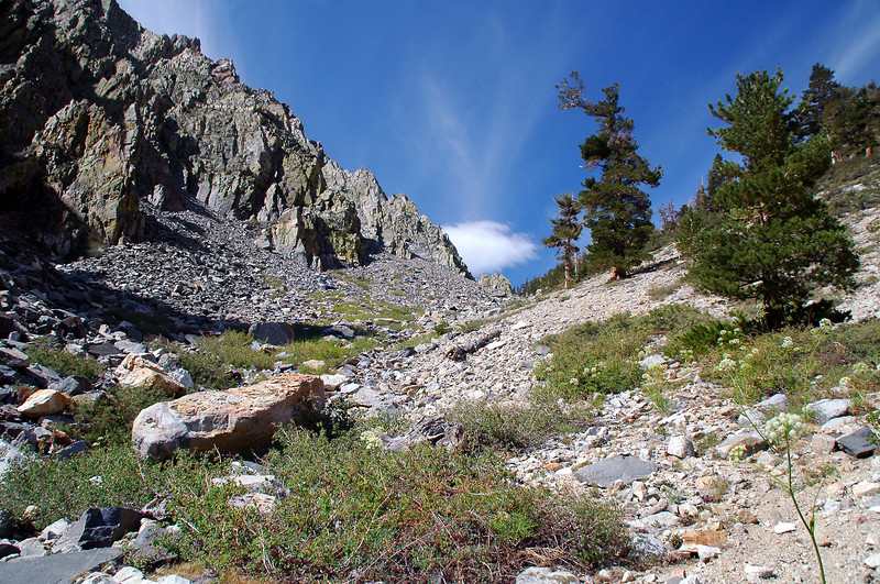 Hiking up a steep canyon.