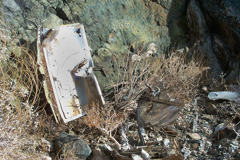 I think this is one of the landing gear doors. There were a lot of little pieces all over.