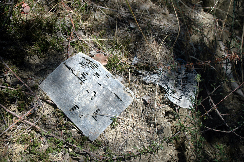 Nearby were a couple of plates from the battery.