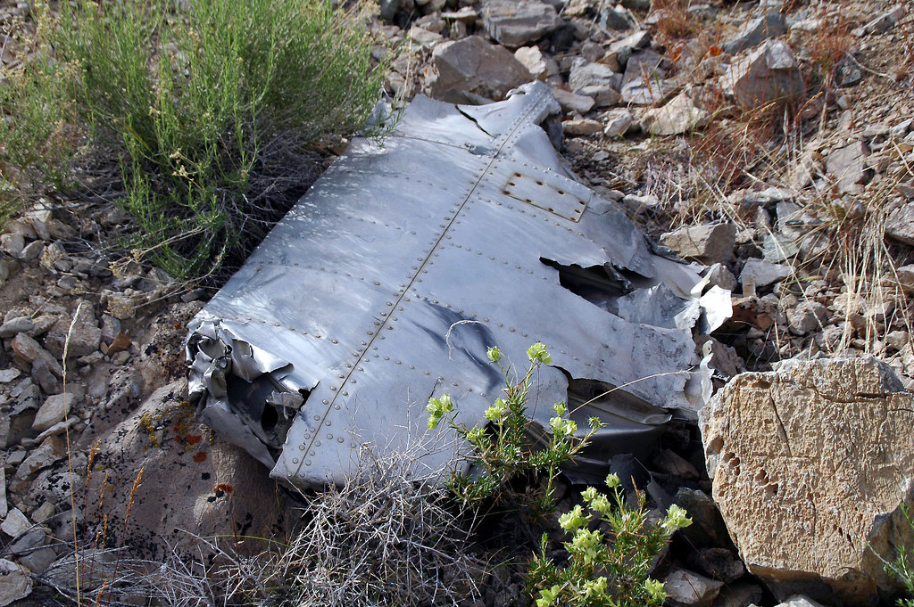 Maybe a piece of the horizontal stabilizer??