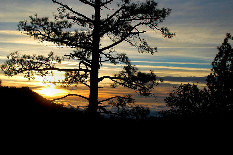 """Sunset from the Angeles Crest Hwy on the drive home.<br /> <br /> The wreckage of the C-119 is near the location of a C-46 tail on the north side of the ridge. The photos from my hike to the north slope showing the C-46 tail and the remainder of the this C-119 wrechage is at this link  <a href=""""http://joeidoni.smugmug.com/gallery/1894019"""">http://joeidoni.smugmug.com/gallery/1894019</a><br /> <br /> The End"""
