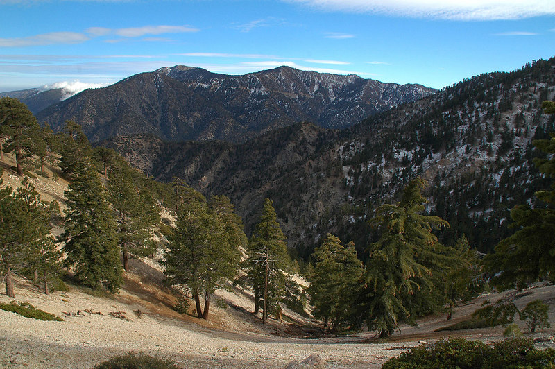 Back up on the ridge, I got a good view of  Mount Baden-Powell and Throop Peak.