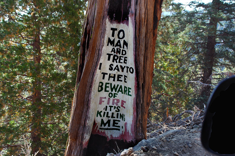 """Found out later that these signs were painted by """"Desert Steve"""" Ragsdale in the early 20th century warning of the fire danger."""