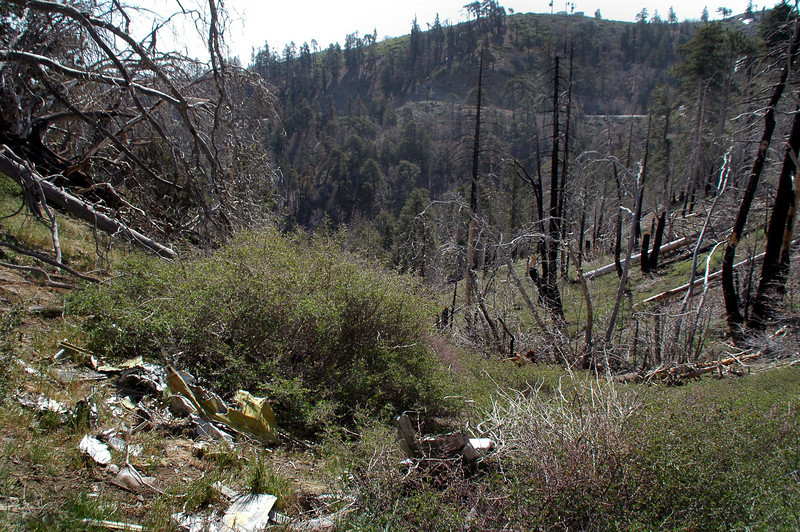 The highway from the crash site.