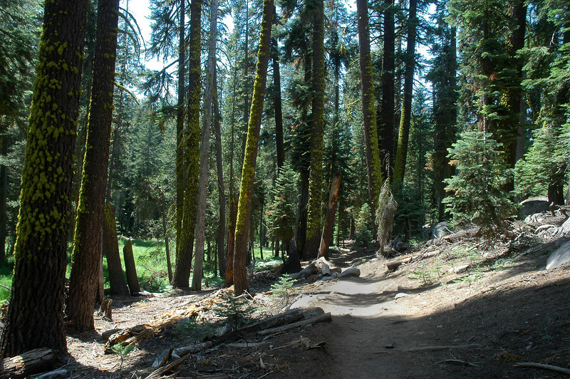 Nice to be hiking on a trail, most of the hikes I've done to crash sites have been cross country.