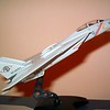 060416: F-14A in 1/100.  After receiving organizational markings.