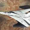 170125: F-14A in 1/100.  Updated photos.