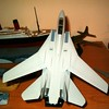 060402: F-14A in 1/100.  Fresh from paint shop.