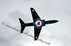 Hawk - With RAF Benevolance Logo