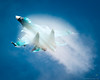 "Sukhoi Su-34 Fullback or ""Hell Duck"""