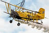 Wingwalking, Grumman G-164 Ag-Cat