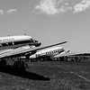 DC-3's (Clipper Tabitha May & Flabob Express)
