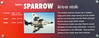 Raytheon Sparrow