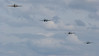 BBMF, Battle of Britain Memorial Flight, PM631, PS853, PS915, RIAT 2007, Spiffire PR Mk.XIX, Spitfire, Supermarine