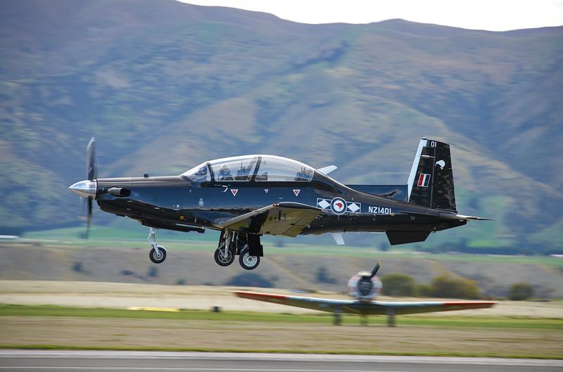 Black Falcon8308