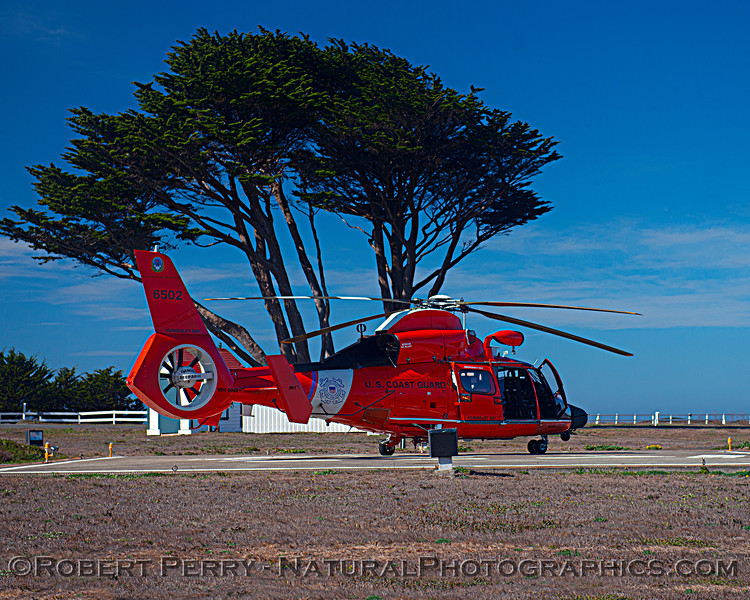 US Coast Guard M-65 short range recovery helicopter near lighthouse 2020 10-22 Pt Arena-b-010